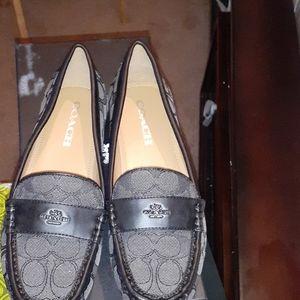 Coach shoes (NWT)